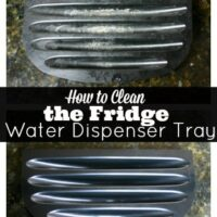 How to Clean the Fridge Water Dispenser Tray