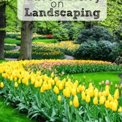 How to Save Money on Landscaping