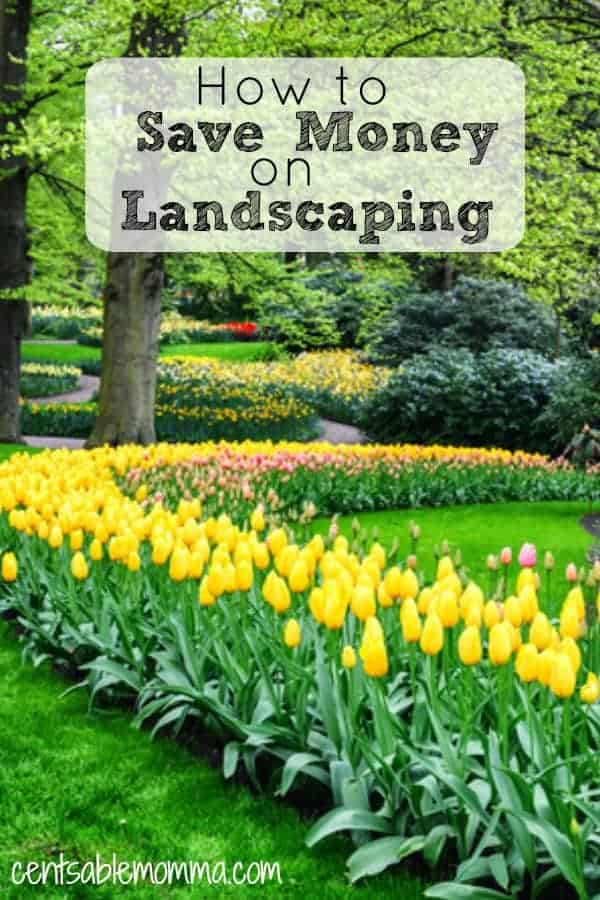 Want to add curb appeal to your yard? Check out these 9 tips for how to save money on landscaping, including flowers, shrubs, and plants.