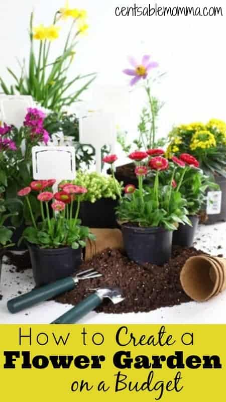 Are you trying to add curb appeal to your house or create a peaceful sanctuary in your backyard? Check out these 5 tips for creating a flower garden on a budget.
