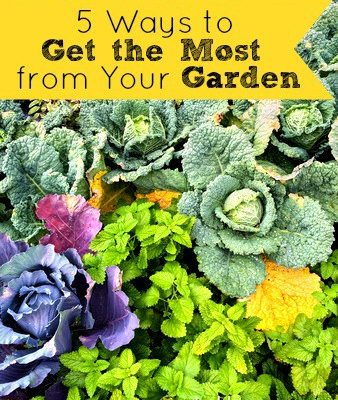 5 Ways to Get the Most From Your Garden