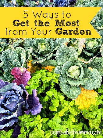 do you have a garden? Check out these 5 tips for how to get the most from your garden. Because the more vegetables you get from your garden, the less produce you need to buy from the store.