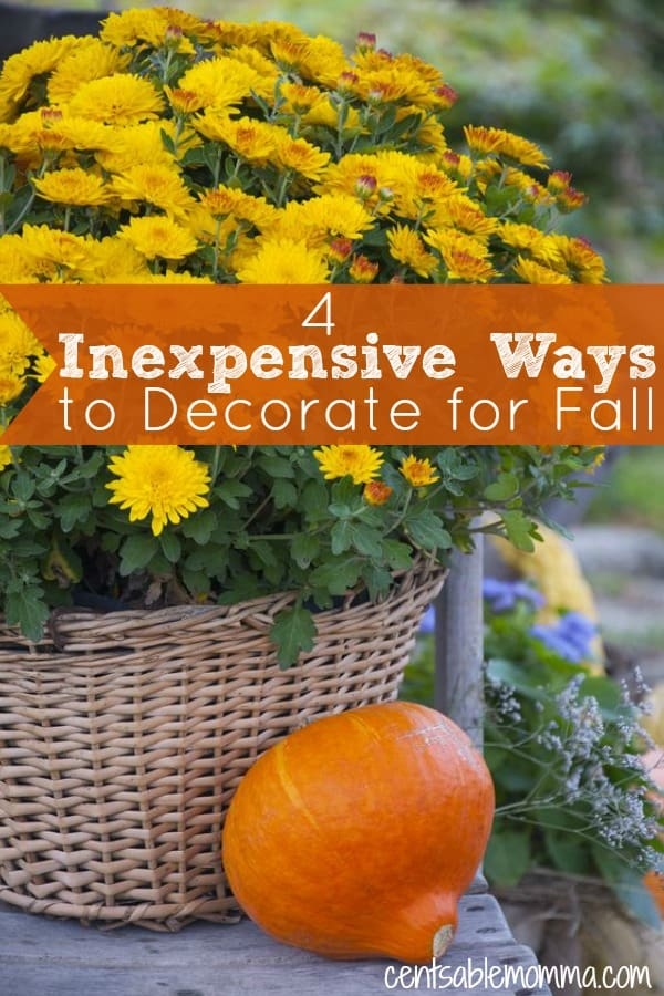 Fall is such a fun season to decorate. But, you don't have to spend a ton of money to have cute decorations. Check out these 4 inexpensive ways to decorate for fall.