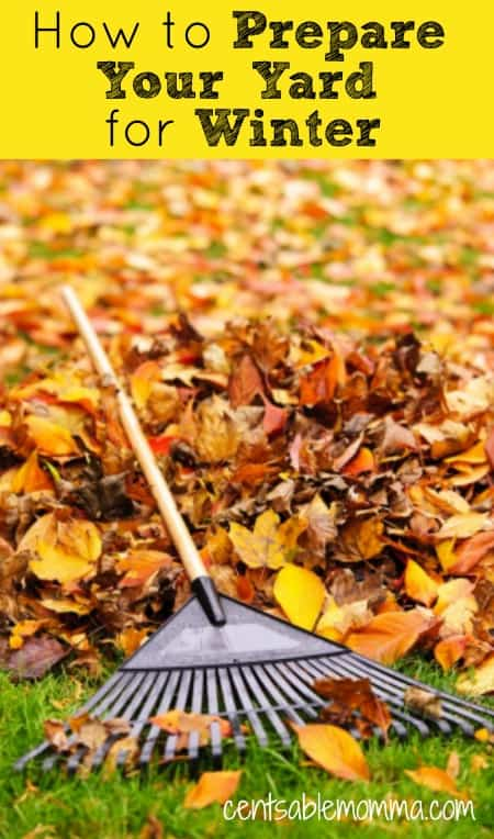As the temperature gets colder, you'll want to start thinking about what you need to do to get your yard ready for winter. Check out these 5 tips to get your yard and landscaping ready for winter with these easy tasks.
