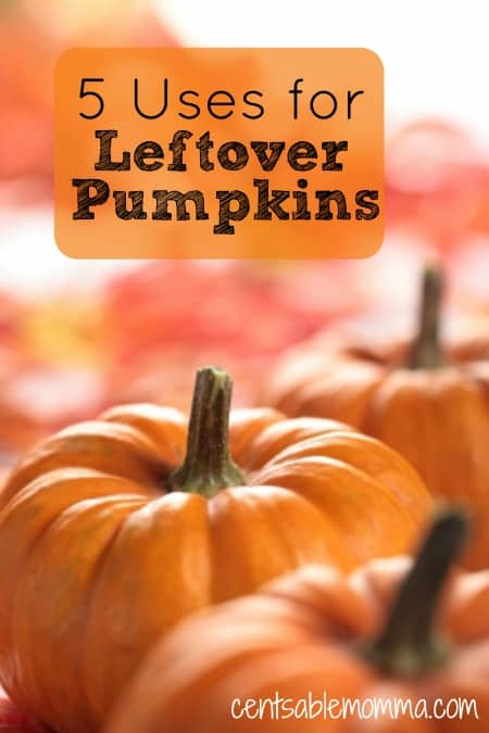 Rather than let pumpkins used for fall decorating or Halloween carving go to waste, check out these 5 uses for leftover pumpkins for some ideas of how to use your pumpkins after the holiday is over.