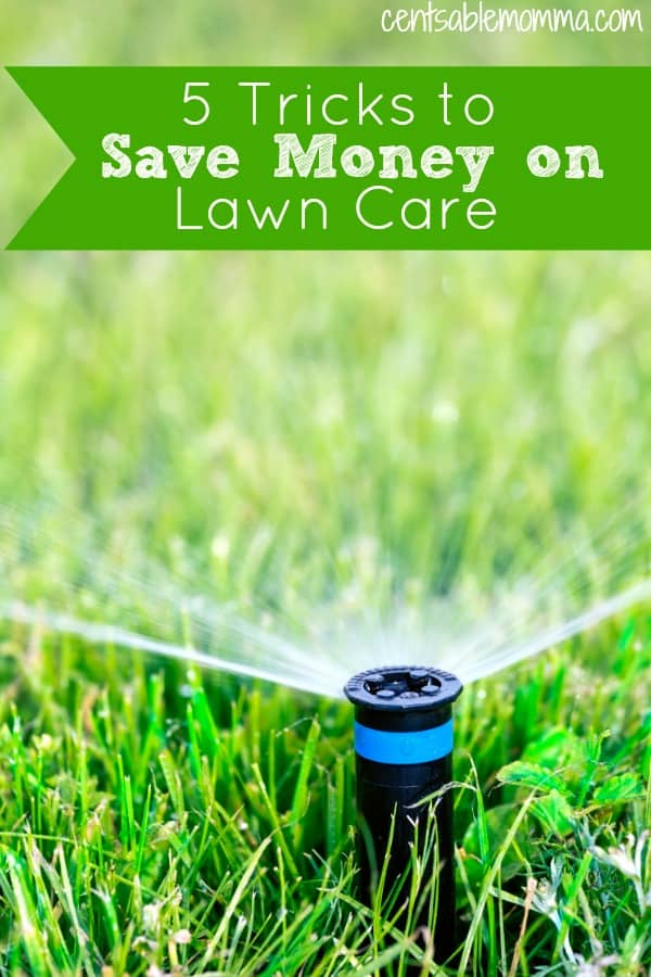 Maintaining your yard can get expensive, but it doesn't have to be.  Check out these 5 tricks to save money on lawn care for some ideas on how you can reduce your yard expenses.