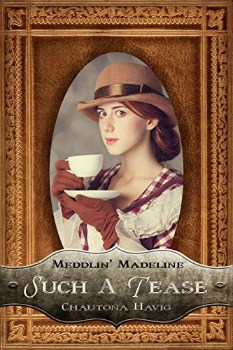 FREE Kindle Book: Such a Tease (Meddlin' Madeline Book 2)