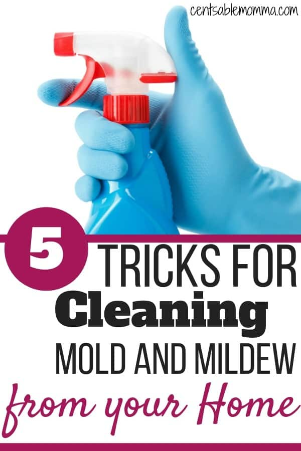 Have some mold and mildew in your house?  Check out these 5 tricks for cleaning mold and mildew from your home (including some preventative tips).