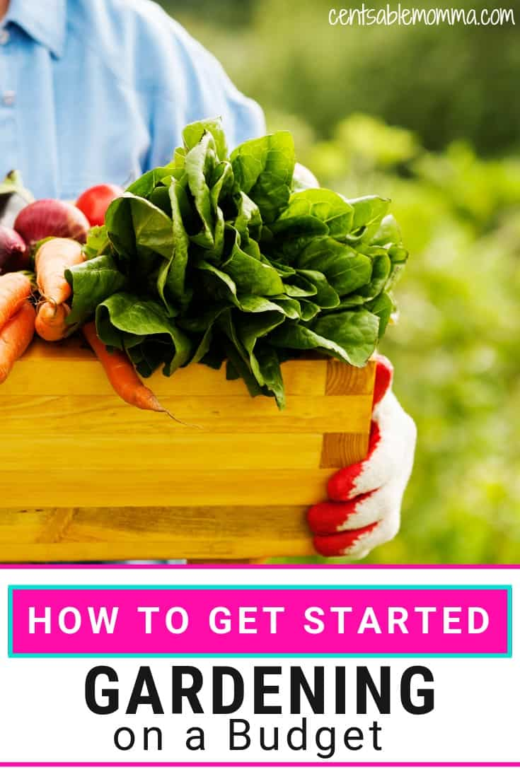 One way to save money on produce is to have a garden in your backyard where you grow your own fruits and vegetables. Check out these 5 tips for how to get started gardening on a budget for ways grow a garden inexpensively.