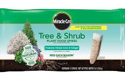 Miracle-Gro Tree & Shrub Fertilizer Spikes (12 pk.): $5.40 (46% off)