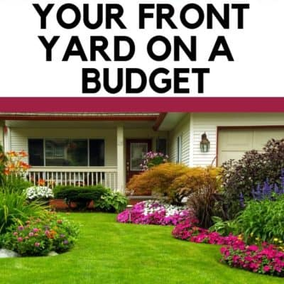 How to Landscape Your Front Yard on a Budget