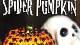 Creepy Crawly Spider Pumpkin