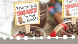 Woody Pudding and Other Toy Story Party Food Ideas