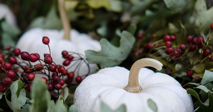 Using Nature to Create a Centerpiece for Your Fall Table