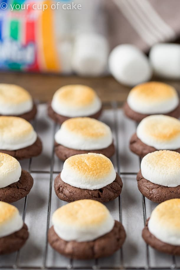 4 Ingredient Hot Chocolate Cookies