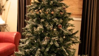 Shrink Wrap Your Christmas Tree