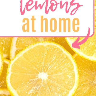 20 Clever Ways to Use Lemons Around Your Home